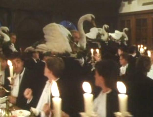 Image result for porterhouse blue swans